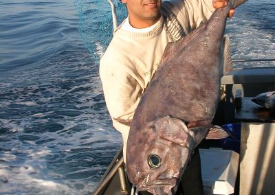 deep sea fish blueeye trevalla