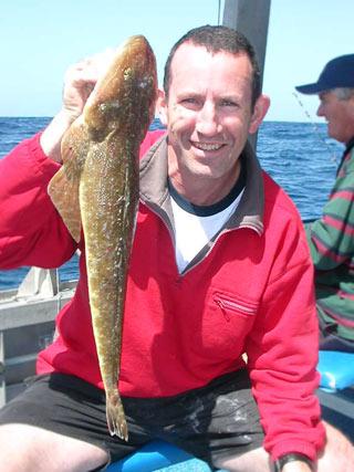 Kiama Fishing charter - Flathead