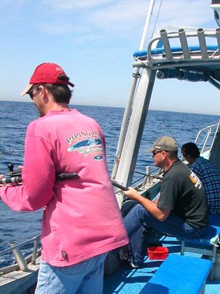 Kiama South Coast fishing charter